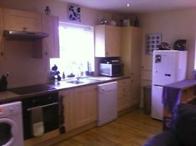 TO LET: Modern, cosy 1 bedroom flat with wet room £650/month all bills included