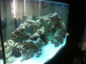 SALTWATER AQUARIUM FULL SOLID WOOD TANK EVERYTHING INCLUDED