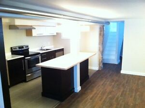 Completely renovated 1 bed in Old West End