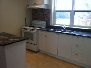 Spacious 2 BDR Apartment in Sandy Hill - $1,195/month