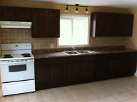 Large 3 bdrm Up and Down duplex for rent in dieppe.