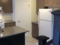 Brand New Town House w/finished Basement