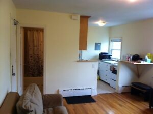 FURNISHED 1 BEDROOM in SOUTH END near DAL/SMU, IWK/VG. DOWNTOWN