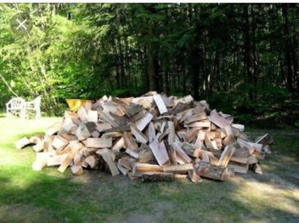 Firewood cut on your property