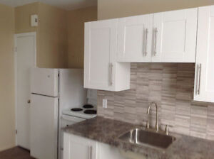 One Bdrm Apt - Walk to Downtown