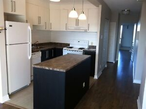 3 1/2 & 4 1/2 Renovated Apartment Queen Mary CDN Snowdon