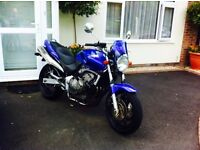 Honda Hornet 600 naked. Blue. 2002. Immaculate condition for year. Low mileage hardly used.