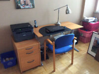Complete Office Set - Table, Lamp, File, Printer Stand + Free De
