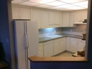 Sun.: New Price! DUTCH AUCTION Cupboards, Appliances, Counter