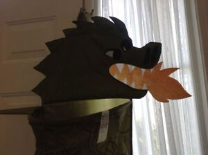 5ft Dragon Organizer Strathcona County Edmonton Area image 3
