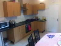Large double room in Wood Green