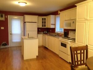 Beautiful spacious one bedroom Inalw suite