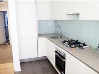 Stunning 1 bedroom ground floor flat in Stoke Newington