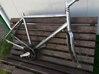 'Specialized' Alloy Frame