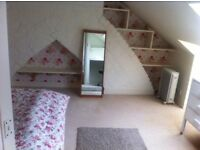 Double room with private loo available for short term, holiday lets