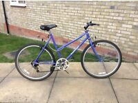 Ladies Rayleigh Calypso Bike
