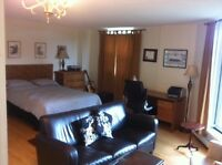Bright and spacious bachelor in South End for Sept