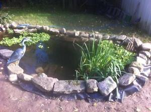 Pond Liner *** Make your landscaping one to desire this spring Kitchener / Waterloo Kitchener Area image 9