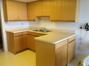 Used kitchen cabinets great deals on home renovation for Kitchen cabinets kijiji