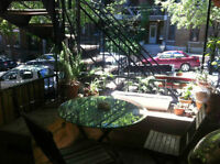 $380 Room in East Plateau for  July/August, Everything included.