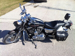 2004 Sportster 1200 XL Custom