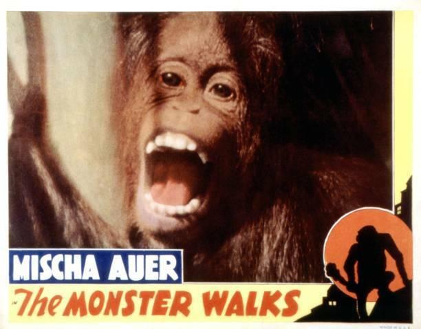 Old Movie The Monster Walks Lobby Card 1932