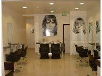 Level 2 and level 3 hairdressers