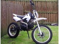 125cc big wheel pitbike