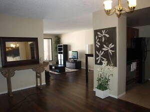 Large, renovated two bedroom for rent