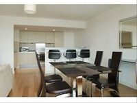 Great Riverside 2 Bedroom Apartment in Falcon Wharf Battersea