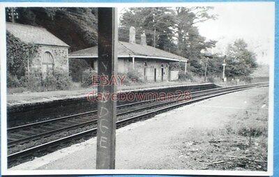 PHOTO  IVYBRIDGE RAILWAY STATION SOUTH DEVON RAILWAY COMPANY