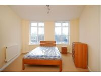 2 Bed Property Available for rent in Warren Street
