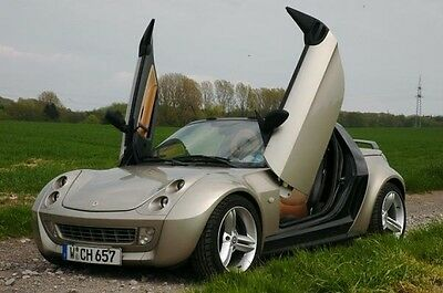 LAMBODOORS SWING DOORS FOR SMART ROADSTER 452 Complete Stainless Steel