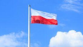 Polish language online- classes, turoring, translating.