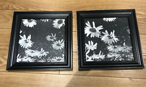 Matching framed paintings Peterborough Peterborough Area image 1