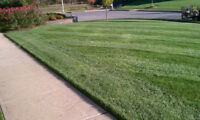 ****landscaping services****