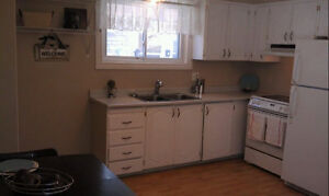 50 shades of YES! Fabulous 3 bed upper level in CENTRAL GALT Cambridge Kitchener Area image 2