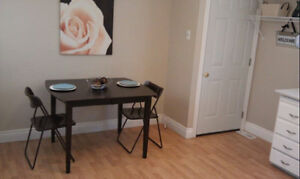 50 shades of YES! Fabulous 3 bed upper level in CENTRAL GALT Cambridge Kitchener Area image 3