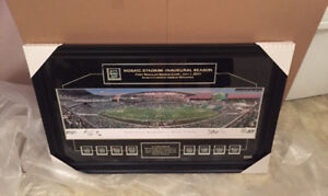 Limited Edition New Mosiac Stadium Panoramic Picture