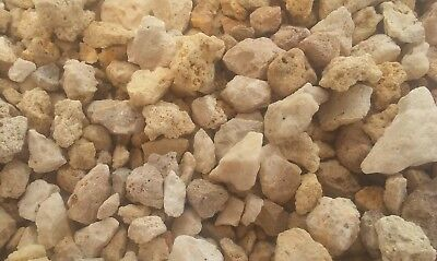 9 lbs Crushed coral stone aquarium fish tank gravel substrate craft DIY Mosaic