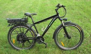 Trillium - Muskoka electric mountain bike