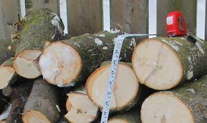 Fire wood Kitchener / Waterloo Kitchener Area image 8
