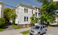 Large, Bright 4 Bdr flat. Minutes from SMU/Dal/Downtown Sept 1st