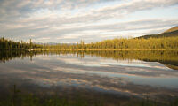 Spacious Lakefront Studio Suite 15 min from downtown Whitehorse