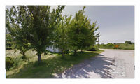Great Find! 10,454.40 Sq. Ft Treed Residential Lot