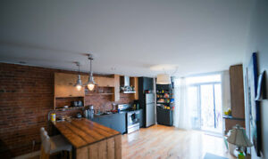 Spacious Sublet in the Heart of the Plateau! (May - Aug)