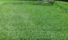 Natural Look Artificial/Synthetic Grass/Lawn/Turf Adelaide Region Preview