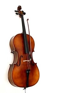 Looking for 4/4 Cello