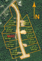 SOLD! executive country living building lot quiet treed lot # 5