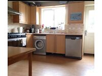 Double room in fun friendly house share